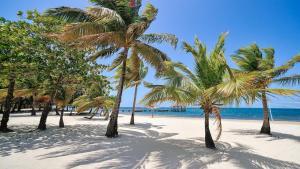 Coconut Grove, Case vacanze  Palmetto Bay - big - 22