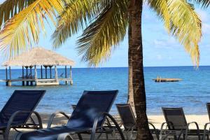 Coconut Grove, Case vacanze  Palmetto Bay - big - 25