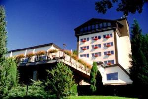 Hotel Reifenstein - Heilbad Heiligenstadt