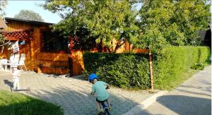 Timaya Holiday Home