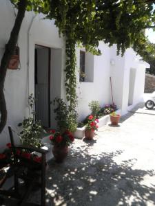 obrázek - LORENZIA'S HOUSE