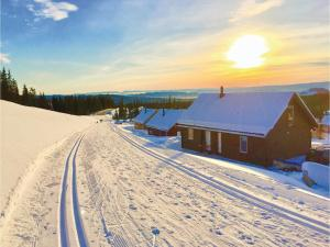 obrázek - Four-Bedroom Holiday Home in Sjusjoen