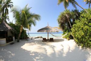 Nika Island Resort & Spa, Maldives, Rezorty  Mativeri - big - 16