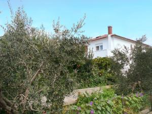 Apartment in Barbat/Insel Rab 16473