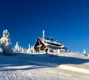 Ski Sun Sea - Rodzinny apartament pod gondolą