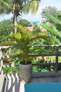 Bungalow Pipamar, Дома для отпуска  Пипа - big - 5