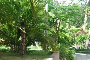 Bungalow Pipamar, Дома для отпуска  Пипа - big - 6