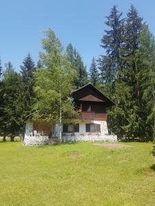 Gozdna Vila
