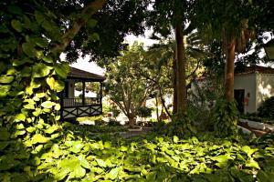 Hotel Jardín Tecina (10 of 59)