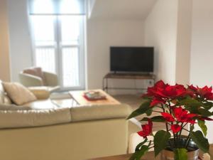 Apartamenty w Bieszczadach