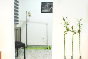 Bujroom, Apartmány  Tuzla - big - 8