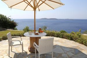 Ifigeneia Luxury Sea View Villa Andros Greece
