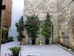 Apartamentos Córdoba Atrium, Apartmány  Córdoba - big - 14