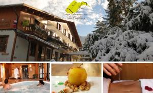 Hotel Restaurant Spa Les Peupliers