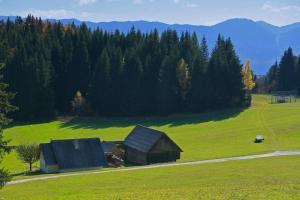 Cottage Zoja