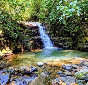 Oxygen Jungle Villas (19 of 30)