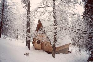 Cabin Una