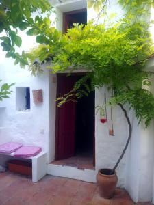 obrázek - Casa Tres
