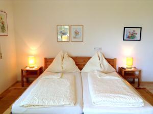 Haus Margit, Ubytování v soukromí  Schlierbach - big - 14
