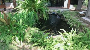 Chill villa, Курортные отели  Прачуапкхирикхан - big - 49