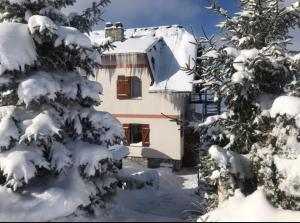 Apartments Casa Pavlovic - Kopaonik