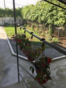 Гостевой дом с садом, Отрадное