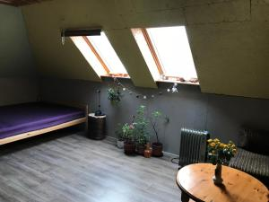 VainodesStr. Rooms&Sauna - Medemciems