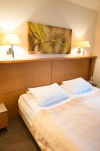 De Lita, Hotel  Druskininkai - big - 4
