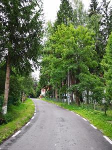 Vila Andreea