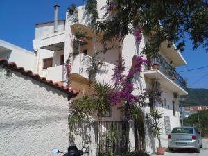 Hostels e Albergues - Pension Galini