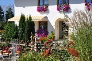 Gästehaus Alpenblick - Hotel - Innsbruck