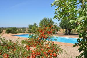 Cantar Do Grilo - Turismo Rural, Vendégházak  Vales Mortos - big - 21