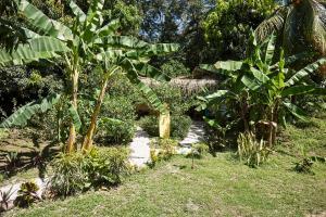 Soleadas Homes, Chaty v prírode  Pláž Santa Teresa - big - 36