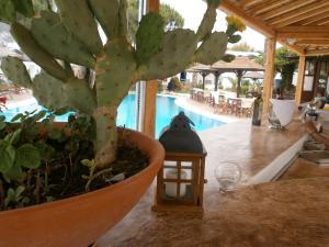 Alkyoni Beach Hotel, Hotely  Naxos Chora - big - 86