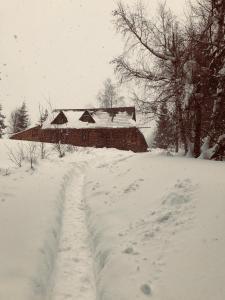 Bacówka w sercu gór - dom z bali w Gorcach