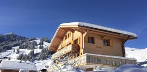 Butterfly - Apartment - Adelboden
