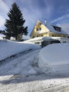 Ferienwohnung Am Berg - Apartment - Feldberg