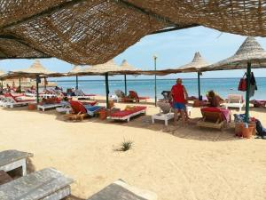 Studio, Apartments  Hurghada - big - 12