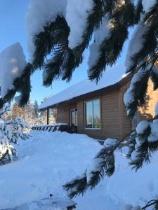 Cottage Ladoga - Oiyavois