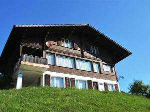 Apartment Kitty (1.+2. Stock) - Hotel - Gstaad