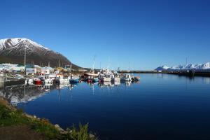 Dalvík Hostel Gimli - Accommodation - Dalvík