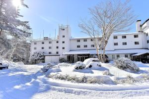 Auberges de jeunesse - Tateshina Park Hotel