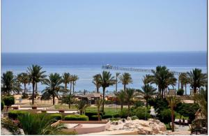 Elphistone Resort Marsa Alam, Абу-Дабаб