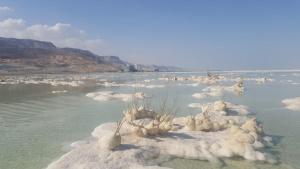Nadia Hosting Dead Sea - Ne'ot HaKikar