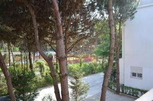 Wonderful House For Rent In Qerret - 061 - Qerret