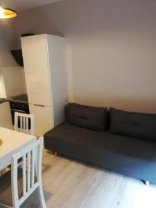 Apartament Centrum Więckowskiego