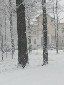 Apartament 26 koło Karpacza