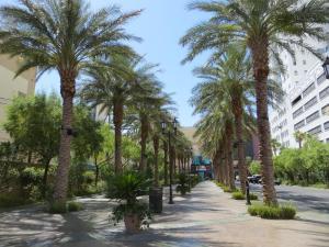 El Cortez Hotel & Casino (38 of 162)
