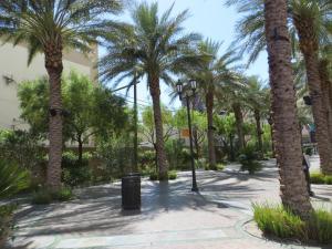 El Cortez Hotel & Casino (39 of 162)