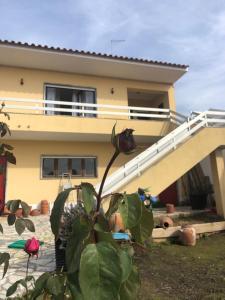 casas da villa - casa amarela - Santa Cruz